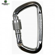CLIMBING TECHNOLOGY D-SHAPE-SG silver